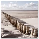 Way Of Golden Sands - Reprodüksiyon