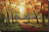 A Beautiful Walk in the Fall Stretched Canvas Print by  Weber