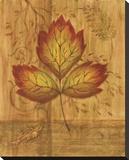Autumn Leaf III Stretched Canvas Print by Marcia Rahmana