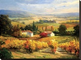 Hazy Tuscan Farm Stretched Canvas Print by S. Hinus