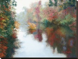 Branch on the Charles Stretched Canvas Print by Esther Engelman
