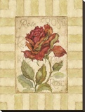 Belle Fleur I Stretched Canvas Print by Betty Whiteaker