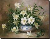 Spring Whites Impressão em tela esticada por Ralph Steiner