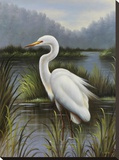 Morning Egret Stretched Canvas Print by  Kilian