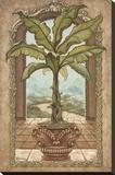Classical Banana Tree Impressão em tela esticada por Janet Kruskamp