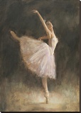The Passion of Dance Stretched Canvas Print by Richard Judson Zolan