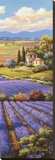 Fields of Lavender I Stretched Canvas Print by Sung Kim