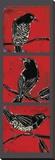 Black Birds Reproduction transférée sur toile par Mark Gleberzon