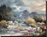 Springtime Valley Stretched Canvas Print by James Lee