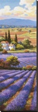 Fields of Lavender II Stretched Canvas Print by Sung Kim