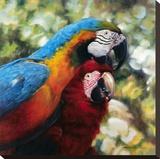 Colorful Pair Stampa su tela di  Arcobaleno
