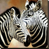 Zebra Pair Stretched Canvas Print by  Arcobaleno