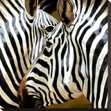 Zebra Close-up Stretched Canvas Print by  Arcobaleno