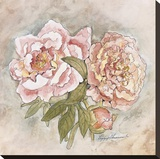 Panneau victorien-pivoines Reproduction transf&#233;r&#233;e sur toile par Peggy Abrams