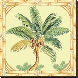 Coconut Palm Stretched Canvas Print by Siddhia Hutchinson
