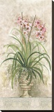 Orchid Revival ll Reproduction transf&#233;r&#233;e sur toile par Peggy Abrams