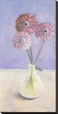 Tarragona Daisies Stretched Canvas Print by Serena Barton