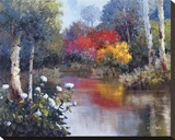 Vibrant Reflections Stretched Canvas Print by Kent Wallis