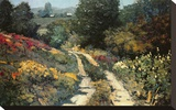 Lane In The Gully Stretched Canvas Print by Kent Wallis