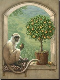 Monkey & Pear Tree Stretched Canvas Print by Janet Kruskamp
