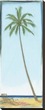 Seaside Coconut Tree Stretched Canvas Print by Paul Gibson