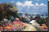 Land Bountiful Stretched Canvas Print by Kent Wallis