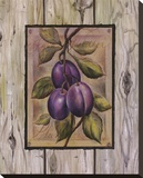 Prune Fructus Reproduction transf&#233;r&#233;e sur toile par Constance Lael
