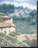 Saint Angelo Vineyard Stretched Canvas Print by Deborah Haeffele
