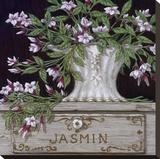 Jasmin Reproduction transférée sur toile par Janet Kruskamp