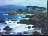 Coastline At Pacific Grove Stretched Canvas Print by Brian Blood
