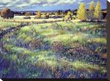 Grasslands Stretched Canvas Print by Claude Rousseau