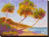 Isla Verde Palms Stretched Canvas Print by Gail Wells