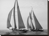 Sailboats Race during Yacht Club Cruise Stretched Canvas Print by Edwin Levick