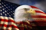 Cabeza de águila calva y bandera americana Poster por Joseph Sohm