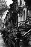 Trapper op til rækkehuse fra 1800-tallet, Brooklyn  Plakater af Karen Tweedy-Holmes