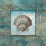 Elements of the Sea II Prints by Charlene Audrey