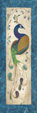 Peacock III Print by Steve Leal