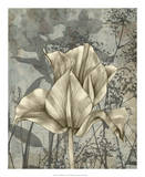 Tulip & Wildflowers IV Prints by Jennifer Goldberger