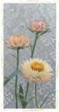 Shanghai Floral I Prints by Megan Meagher
