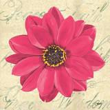 Floral Dream IV Posters af Debbie DeWitt
