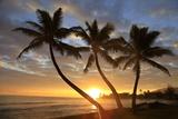 Sunrise, Windward Oahu, Hawaii Poster af Douglas Peebles