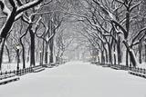 Central Park om vinteren Poster af Rudy Sulgan