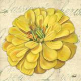 Floral Dream II Posters af Debbie DeWitt