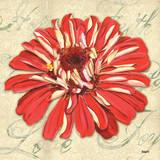 Floral Dream I Plakater af Debbie DeWitt