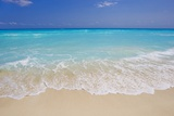 White sand beach in Cancun Posters by Mike Theiss