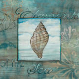 Elements of the Sea I Print by Charlene Audrey