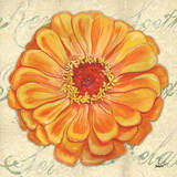 Floral Dream III Plakater af Debbie DeWitt
