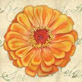 Floral Dream III Prints by Debbie DeWitt