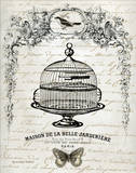 French Birdcage I Art by Gwendolyn Babbit