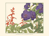 Small Japanese Flower Garden VI Posters by Konan Tanigami